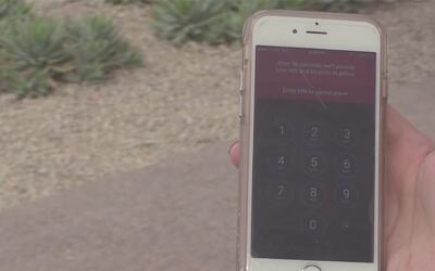 Aplicación de teléfono podría prevenir diversos delitos