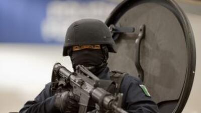 La DEA y la policía mexicana han incrementado sus esfuerzos por combatir...