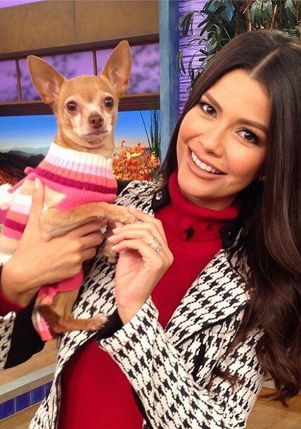 """La chiquita ya regreso a trabajar @HoneyBerryTv @DespiertaAmericaTv"", c..."