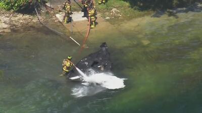 Autoridades investigan el incendio de un bote en el suroeste de Miami-Dade