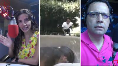 (VIDEO) Policía busca a hombre que le dio una nalgada a hipopótamo