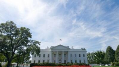 Los resultados del martes para conocer al Presidente de Estados Unidos,...