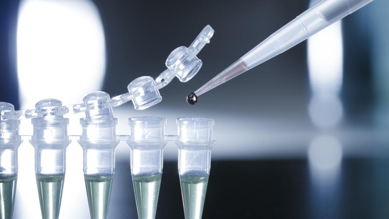 Expertos aseguran que la terapia con células madre impedirá que millones...