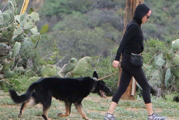 Mientras tanto, Iro seguía disfrutando de la caminata con sus amigos.