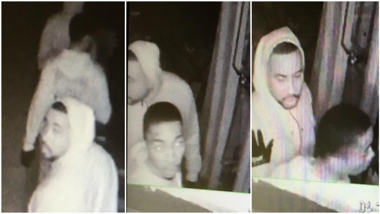 Se presume que los presuntos criminales han participado en 20 robos.