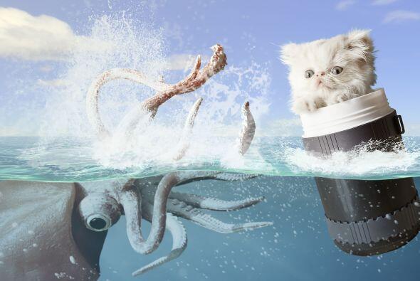 Hasta escapar de un calamar gigante.