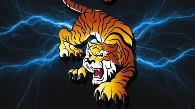 Aries - Horóscopos, Números Especiales, Zodiacal tigre.jpg