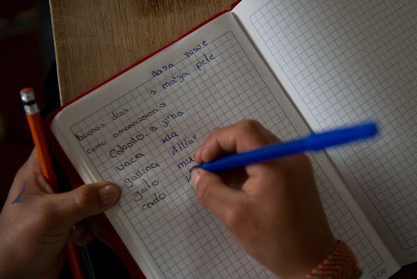 Esta característica cultural de los cuadernos se demostró...