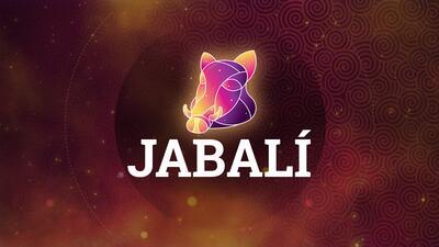 Llega el Jabalí con trabajo, prosperidad y reconciliación amorosa