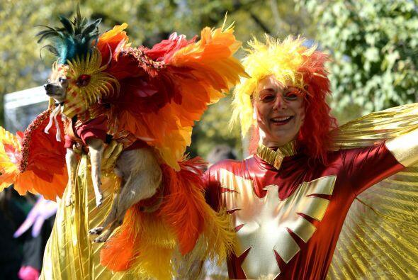 Si se trata de imprimirle el espíritu de carnaval al traje, algo sí es l...