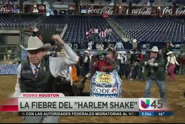 La fiebre del Harlem Shake también llegó a Houston y el staff del Rodeo...