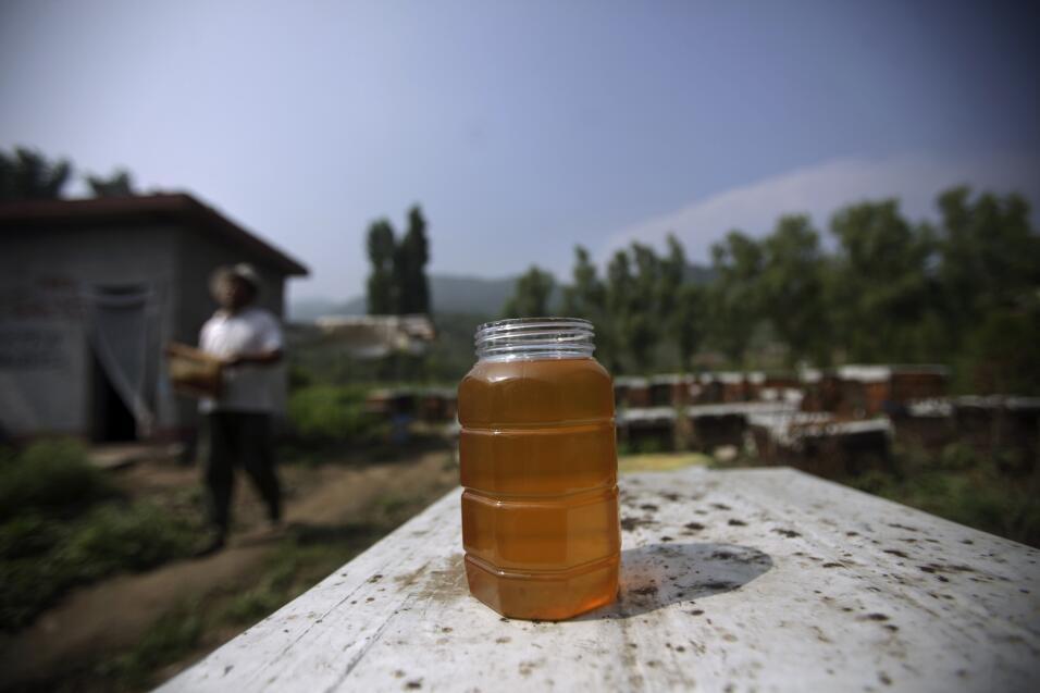 salud alergias miel