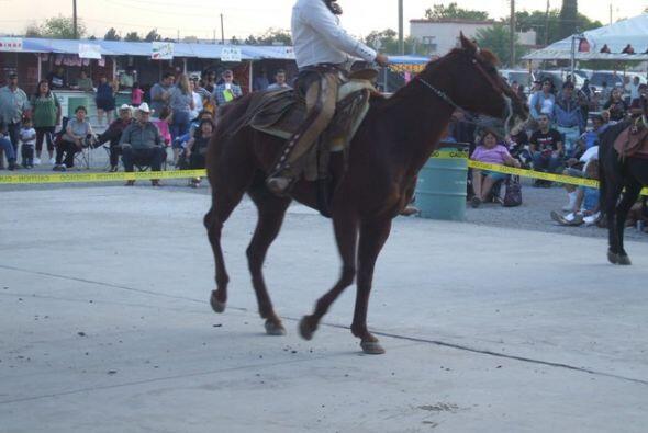 Hubo caballos que entretuvieron a todos los presentes con sus actos que...