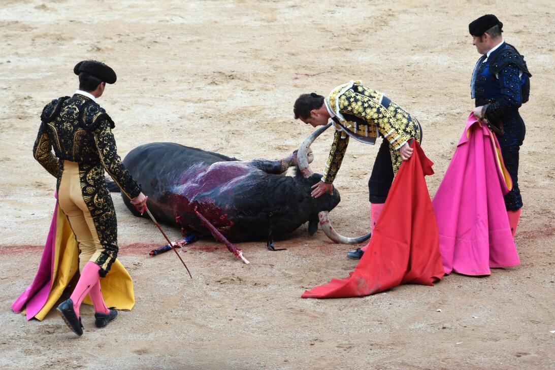 Fiestas españolas de San Fermín: ¿tortura o tradición? GettyImages-81207...