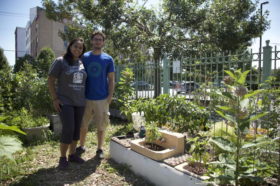 El área donde se encuentra este vibrante jardín comunitario llamado &quo...