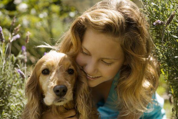 Menos irritación. Muchos padres creen que los canes podrían exacerbar es...