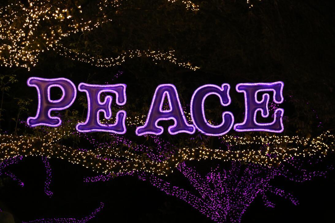 Recorrido por el festival de luces del zoológico de Houston