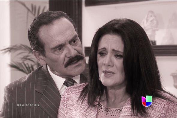 Usted fue el malvado que la separó de don Fernando y le arrebat&o...