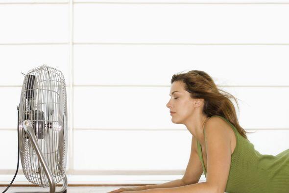 Usar ventiladores no enfría el ambiente pero hace que tu percepción de l...