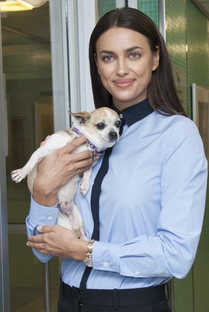¡Qué envidia de cualquier perro que esté en brazos de Irina!