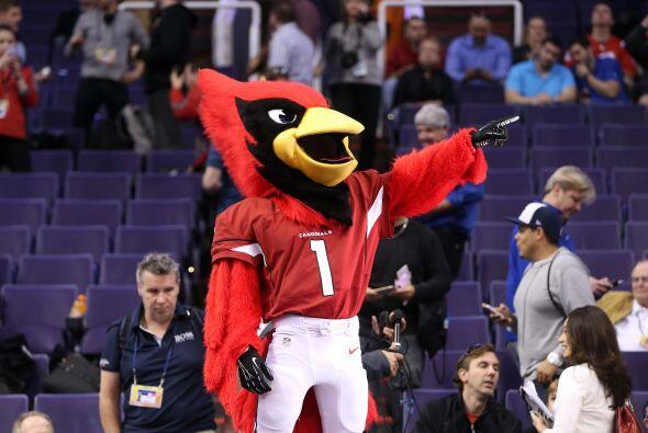 No podía faltar 'Big Red' la mascota de los Arizona Cardinals (AP-NFL).