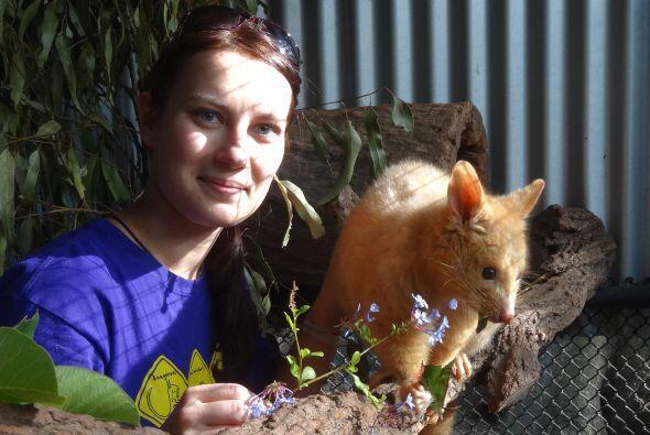 Desde Australia hasta países como Sudáfrica, ella ha sido voluntaria par...