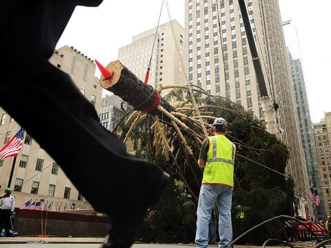 Llegó el emblemático árbol de Navidad al Rockefelle...