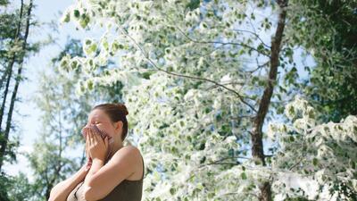 Descubre las causas detrás de las alergias de otoño y cómo combatirlas.