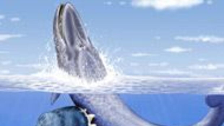 Hallan restos de cachalote gigante con dientes colosales en Perú 6c88819...