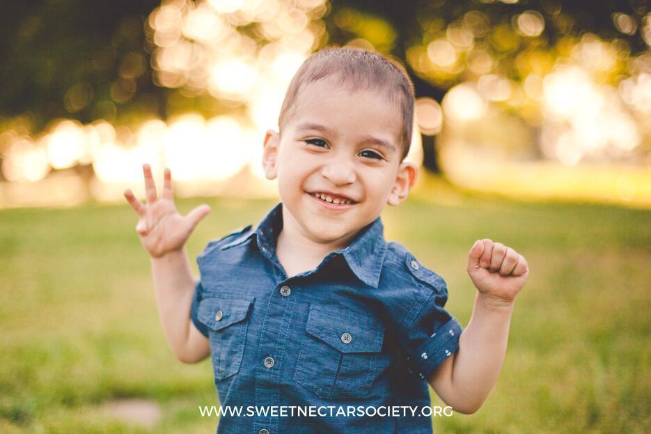 Fotos Sweet Nectar Society