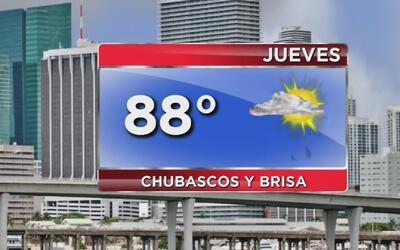 Jueves de viento, alta temperatura y disminución de las lluvias en Miami