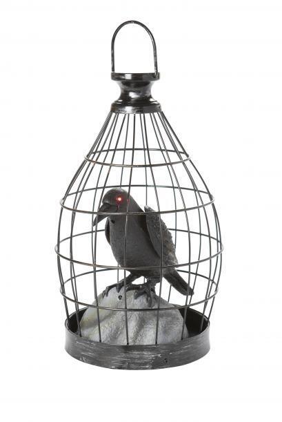 Si posees un pórtico, esta jaula con su demoníaco cuervo harán lucir tu...