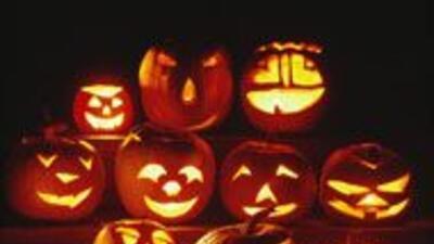 ¿No sabes qué hacer para Halloween?