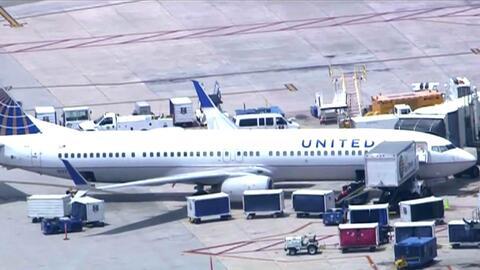 Impacto contra un ave obliga al piloto de un avión de United a regresar...