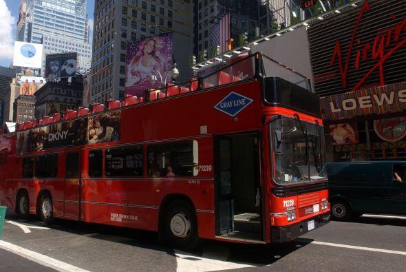 Durante todo el año las compañías de buses ofrecen un tour por la ciudad...