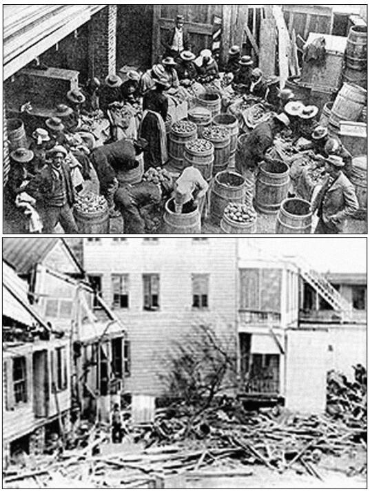 Carolina del Sur y Georgia. 1000-2000 fallecidos