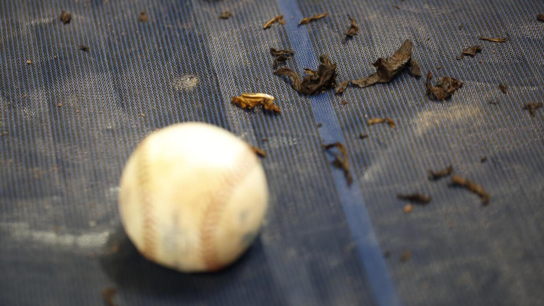 El tabaco no podrá utilizarse en áreas deportivas.