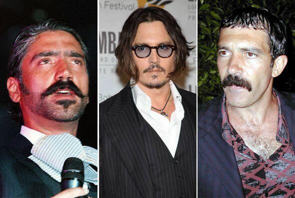 Dicen que un hombre sin bigote, es un hombre sin alma... Este vello faci...