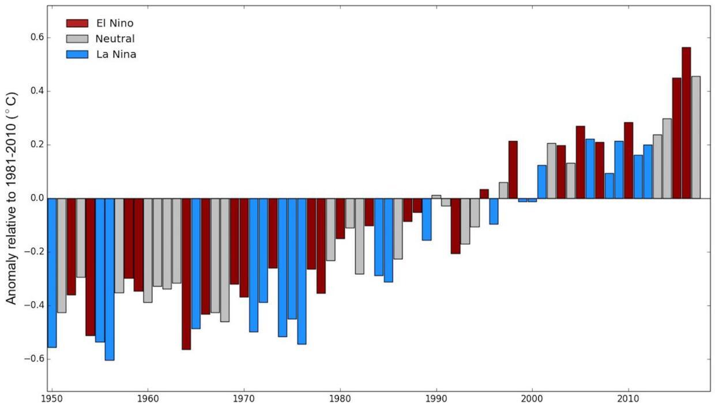 Así se ven las anomalías globales de la temperatura superficial promedio...