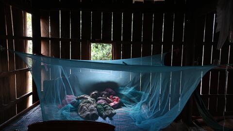 A pesar de los avances, la malaria continúa siendo un problema de...