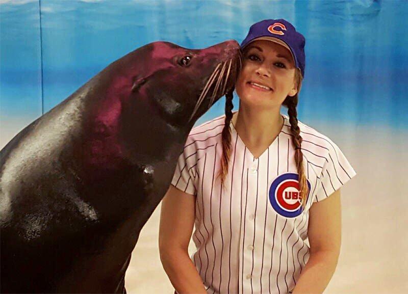 Animales y personal del acuario Shedd se unen a la celebración por los Cubs