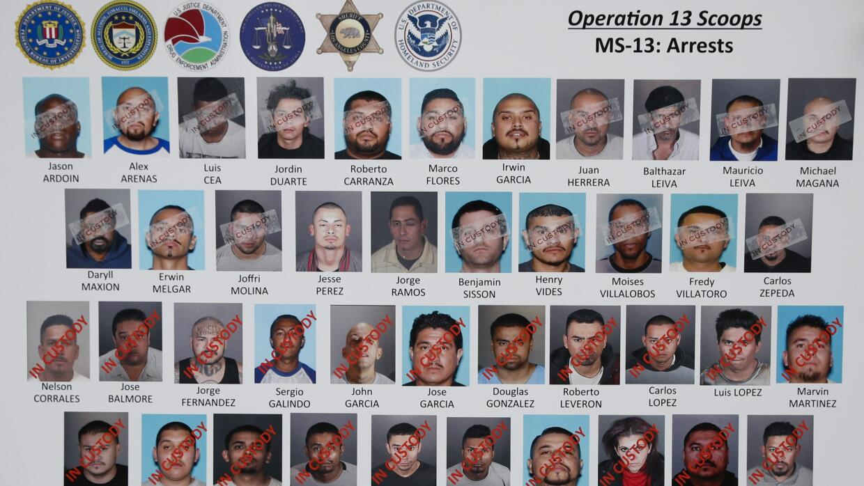 Un total de 44 líderes y operadores de la pandilla MS-13 en Los Ángeles...