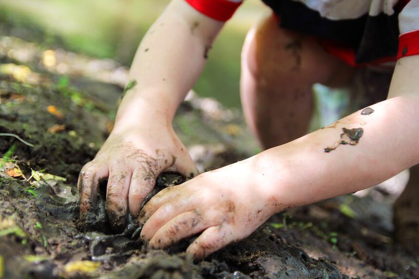 Cuando la mejor terapia es un paseo entre los árboles  istock-619539728.jpg