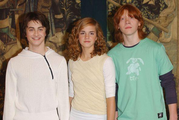 Harry, Hermione y Ron parecen el tipo de compañeros que todos querrían t...