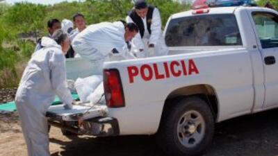 Los cuerpos policiacos de la ciudad de Monterrey, al norte de México, ha...