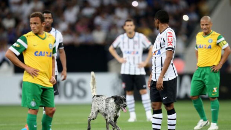 Cuando se jugaba el minuto 16 del partido entre Corinthians contra Corit...