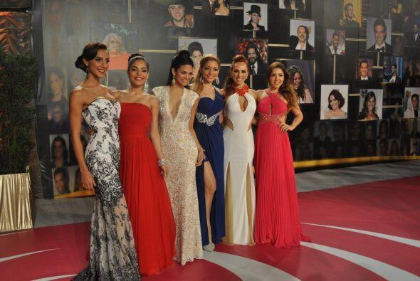 Este año Nuestra Belleza Latina tiene a 12 mujeres hermosas y talentosas.