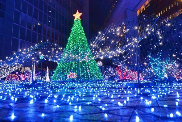 Se dice que son tiempo de paz y amor así que, ¡feliz navidad!