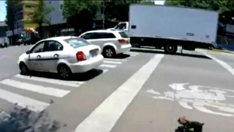 Una ciclista graba a una perra que corre a toda velocidad por una transi...