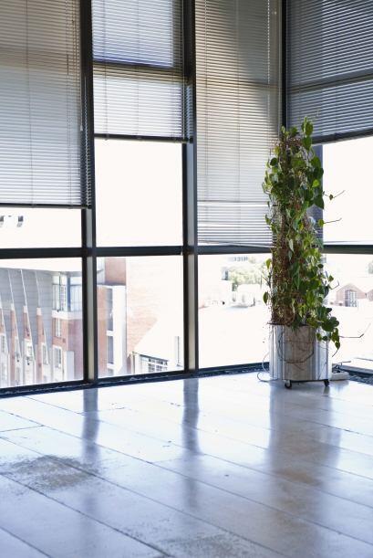 Las texturas de las cortinas pueden ser más informales (ásperas o rústic...